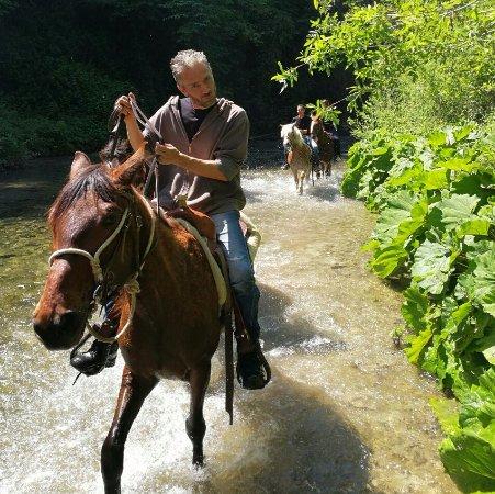 Rodeo A Cavallo.Passeggiata A Cavallo Presso Il Rodeo Picture Of