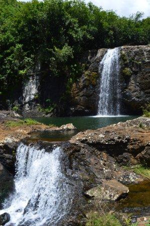 Black River Gorges National Park: Black River Georges