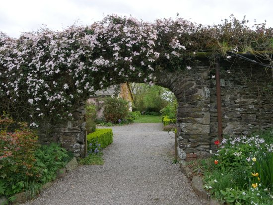 Shanagarry, Ireland: walled garden