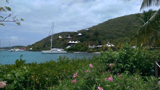 North Sound, Virgin Gorda: Lush tropical flowers and trees