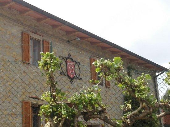 Magione, Italy: La cantina