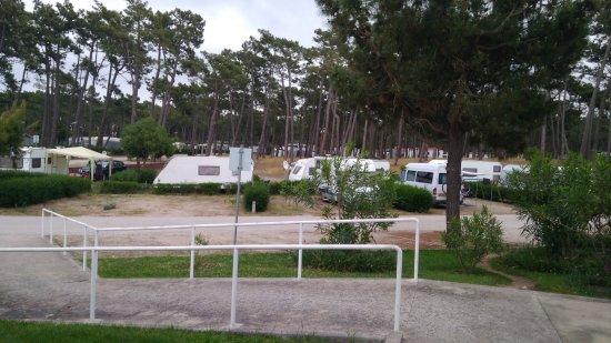 Parque de campismo Orbitur Gala: IMG_20170425_081823_large.jpg