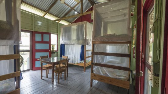 Unitedville, Belize: Bunk room with privacy curtain for every bed