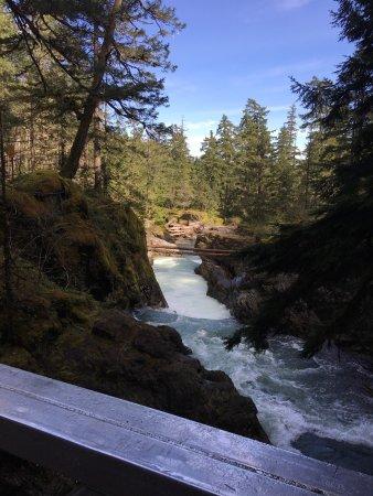 Little Qualicum Falls Provincial Park: photo0.jpg