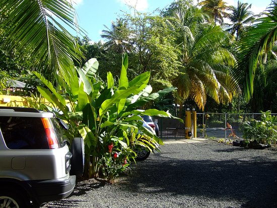 Mirage Beach Resort: PRIVATE PARKING RKING INSIDE OF THE PREMISES