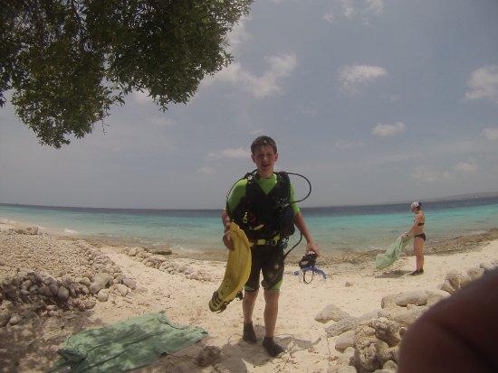 Buddy Dive: photo0.jpg