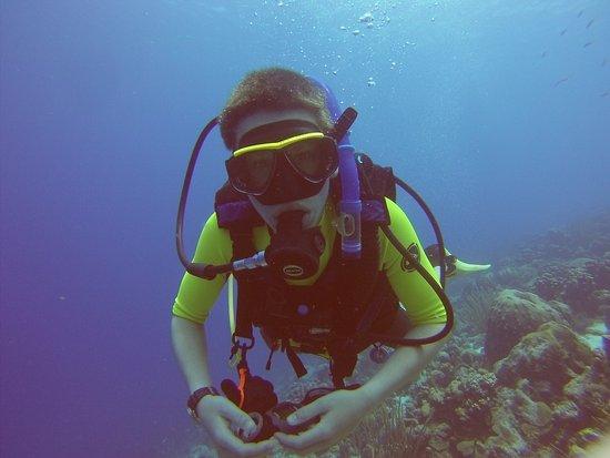 Buddy Dive: photo1.jpg