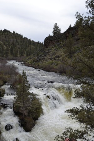 Crooked River Ranch, OR: Steelhead Falls