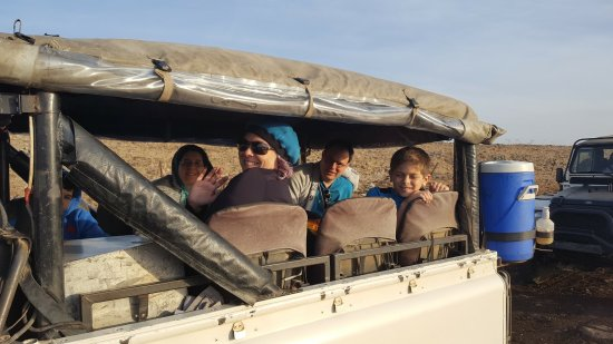 Merom Golan: Back seat adventurers