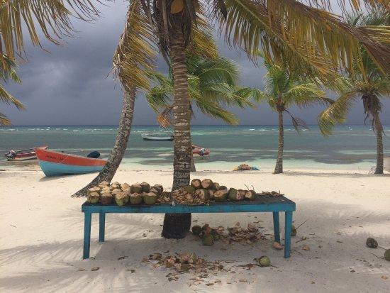 Bayahibe, Den dominikanske republikk: photo3.jpg