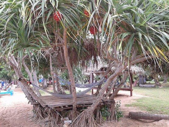 Koh Tonsay (Rabbit Island): KEYF YAPACAGINIZ HAMAKLAR