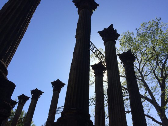 Natchez, MS: Windsor Ruins side trip