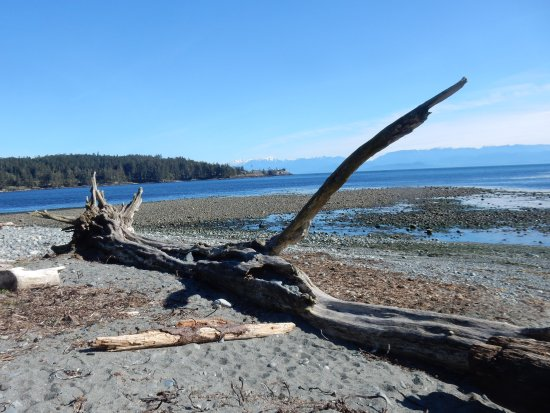 Sooke, Canada: It was nice to be able to see the Olympic Mountains.