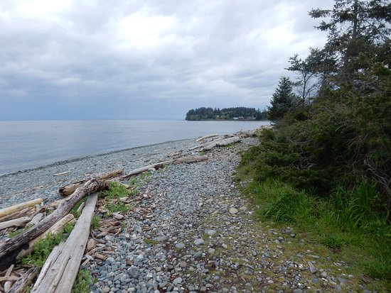 Sooke, Canada: The next day, the clouds had moved in.
