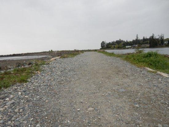 Sooke, Kanada: Back onto the main trail.