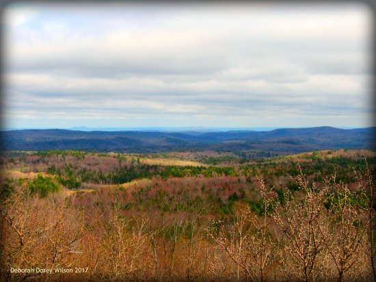 Γουίλμινγκτον, Βερμόντ: The view from Hogback Mountain Gift Shop on April 28, 2017... YES!!!