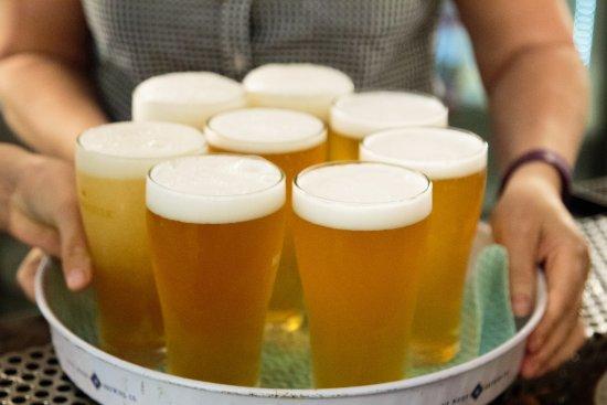 Eumundi, Australia: Sampling a trial brew of Ginger Pale Ale