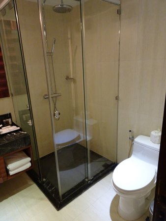 Shower stall and toilet in bathroom - Picture of Paragon Saigon ...