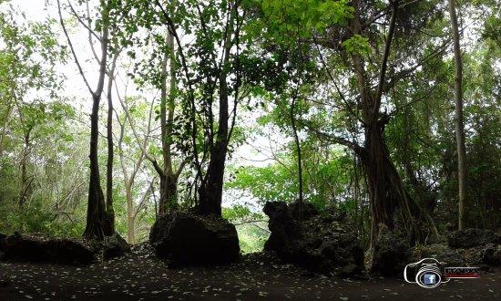 La Cueva Berna, Boca de Yuma Higuey RD