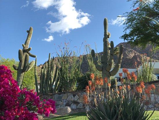 Paradise Valley, AZ: photo3.jpg