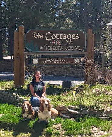 Tenaya Lodge at Yosemite: photo0.jpg