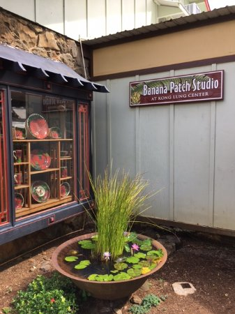 Kilauea, HI: Garden between shops