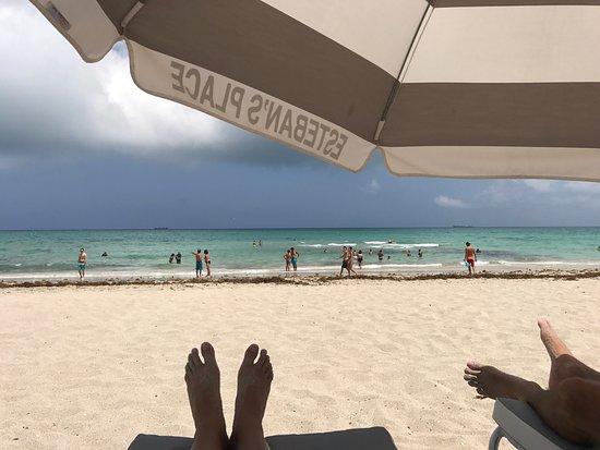The Clay Hotel Miami Beach Bewertung