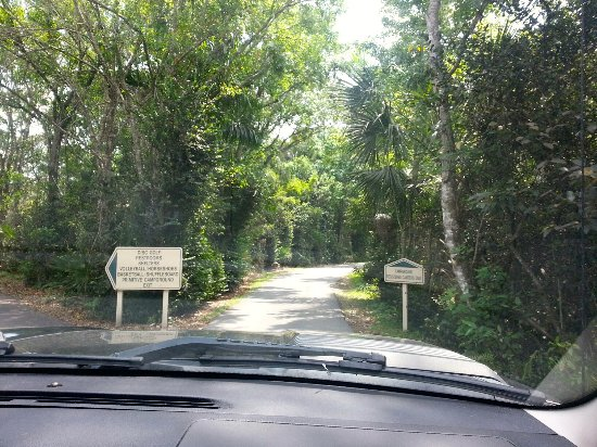 Oakland Park, Флорида: Tree-lined entrance to Easterlin campground.