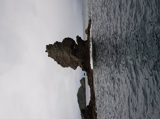 Great Barrier Island張圖片