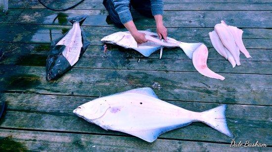 Sooke, Kanada: MORE FISH