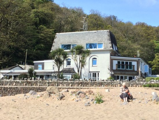 Dog Friendly Hotels In Gower Peninsula