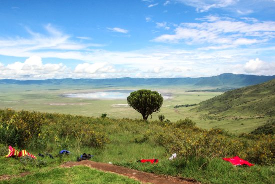 Arusha Region, Tanzania: The view down into the Ngorongoro Crater
