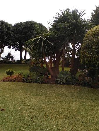 Healthouse Las Dunas Beach Hotel and Spa: IMG_20170424_163239_large.jpg