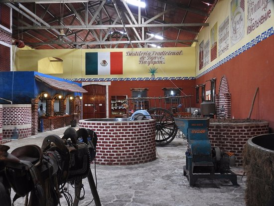 Mayapan Traditional Agave Distillery: Een kijkje op de plek waar het allemaal verwerkt wordt. Hier kun je ook proeven.
