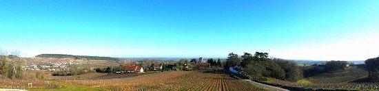 Mercurey, France : La vue depuis le domaine / The view from the domain