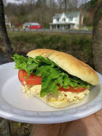 Sperryville, VA: Best Chicken Salad sandwich on ciabatta bread