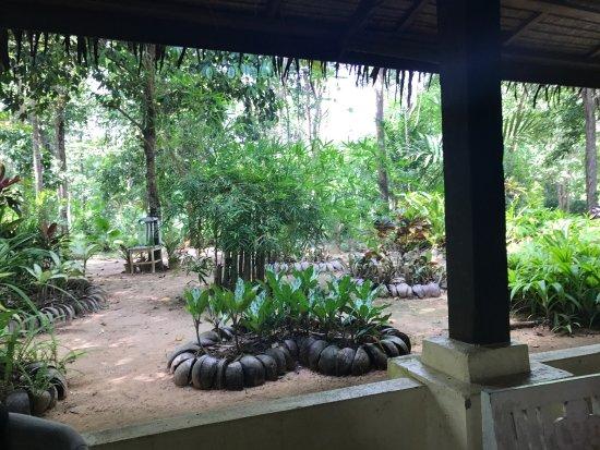 Khlong Thom, Tajlandia: photo3.jpg