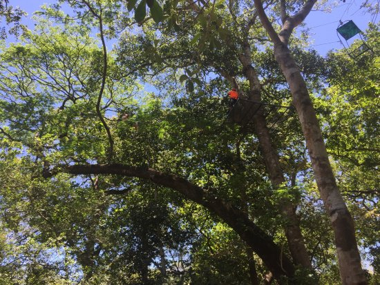 Artola, Costa Rica: photo0.jpg