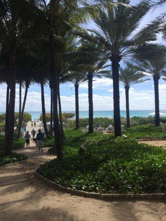 Surfside, FL: photo3.jpg