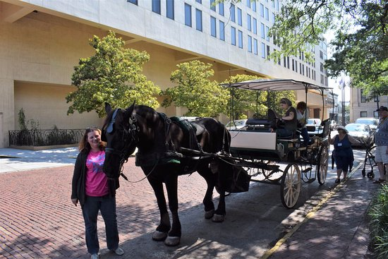 Historic Savannah Carriage Tours : Elizabeth is next to Batman, the horse, Michele is in the carriage.
