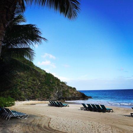 Renaissance St. Croix Carambola Beach Resort & Spa: photo0.jpg