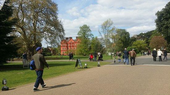 Richmond-upon-Thames, UK: 1492259746955_large.jpg