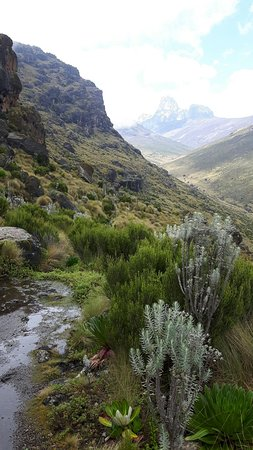 Mount Kenya National Park, Kenia: IMG-20160831-WA0026_large.jpg