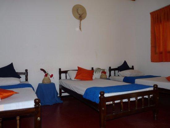 Landscape - Picture of Unawatuna Singha Lounge - Tripadvisor