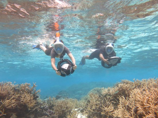 Maharepa, Polinezja Francuska: sea-scooter tour / Reef adventure