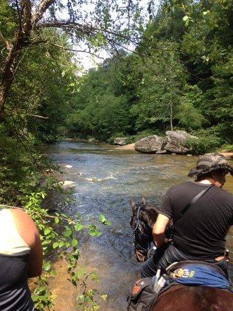 Bandy Creek Campgrounds: FB_IMG_1468596271474_large.jpg