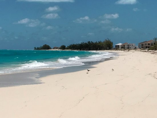 Bimini: Mid-week beach (empty).
