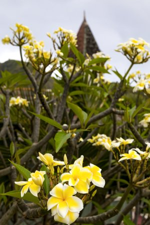 Wailuku, Hawái: The old church