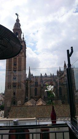 Nuestra Vista Desde La Terraza Picture Of La Terraza