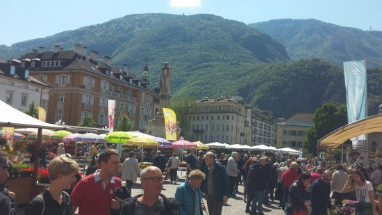 Piazza Walther: 20170429_114710_large.jpg